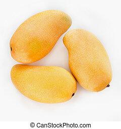 Fresh three mango fruit on white.