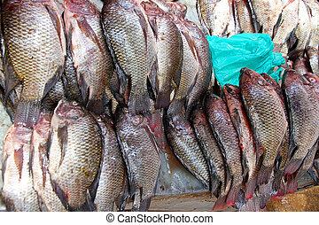Fresh Tilapia Fish in the Market