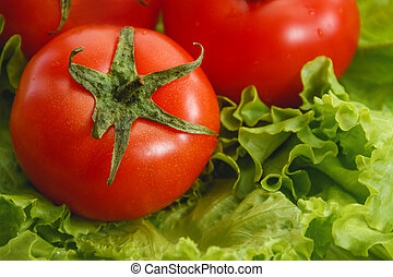 Fresh tomato and salad, vegetable. Health care food