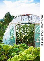 greenhouse meadow garden