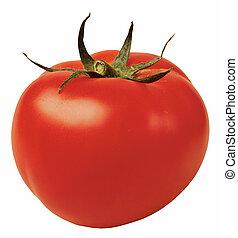 tomato - fresh tomato