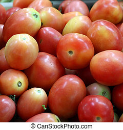 Fresh Tomatoes at the grocery store