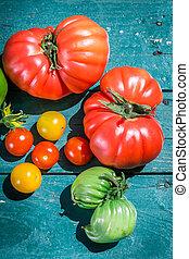 Fresh tomatoes in garden