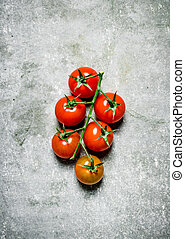Fresh tomatoes on a branch.