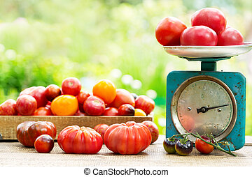 fresh tomatoes on wooden table