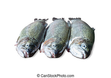 fresh trout on white background