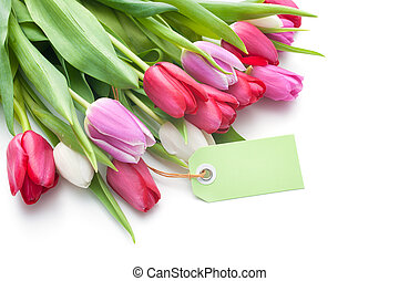 fresh tulips and tag with copy space isolated on white background