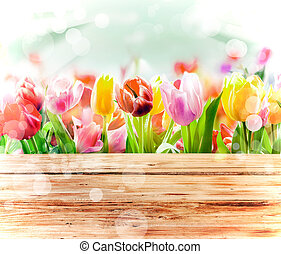 Fresh tulips in bright sunlight with a bokeh - Multicoloured...