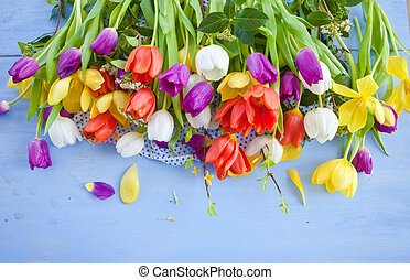 Fresh tulips on blue wooden background