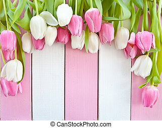Colorful tulips on pink and white painted wooden boards