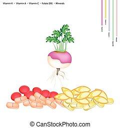 Fresh Turnip with Vitamin K, A, C and B9