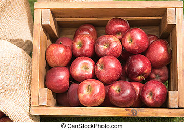 fresh usa apple in a wooden box