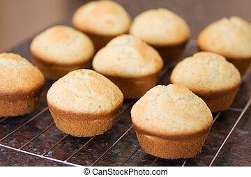 Fresh vanilla muffins cooling off
