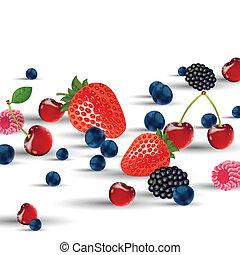 Fresh Vector Berries