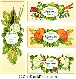 Fresh vegetable banner set with copy space