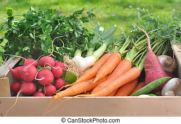 fresh vegetable in a wooden crate
