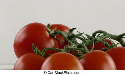 Fresh Vegetable Tomato