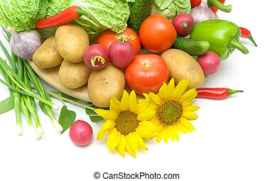 fresh vegetables and sunflowers on a white background close-up. horizontal photo.