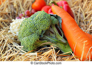 Fresh vegetables  broccoli and grapes on straw.