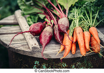 Fresh vegetables, carrots and beets. Healthy eating.