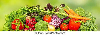 Fresh vegetables. - Fresh organic vegetables over green...