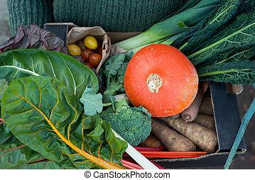 Fresh Vegetables in Cardboard Packaging