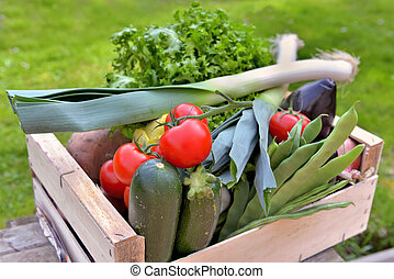 fresh vegetables in crate put a table in a garden