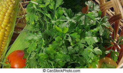 Fresh vegetables in wicker basket at the garden closeup pan...