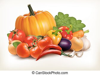 Fresh vegetables isolated on white background. Vector background.