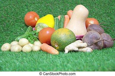 Fresh vegetables on green grass background