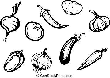 Set of fresh vegetables isolated on white background