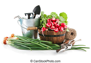 Fresh vegetables with garden tools. Isolated on white...