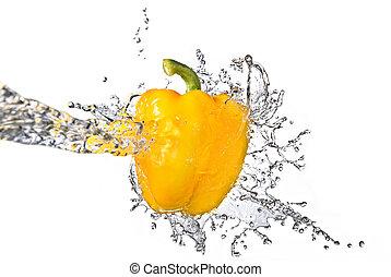 fresh water splash on yellow sweet pepper isolated on white