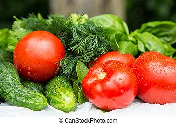 Fresh wet home grown vegetables