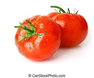 fresh wet tomato fruits