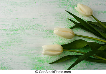 Fresh white and purple tulips background