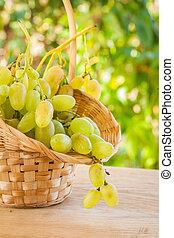 fresh white grape in wicker busket on wooden table in wineyard
