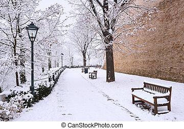 Fresh white snow in a city park