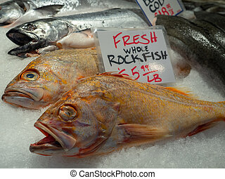 Fresh whole rockfish frozen on ice in a fish market