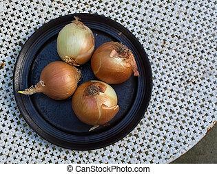 Fresh yellow onions plate