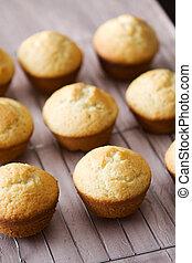 Freshly baked vanilla muffins on metal grid