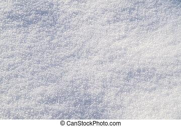 freshly, caído, neve