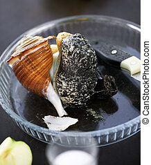 Freshly caught broken large raw sea snail on glass plate