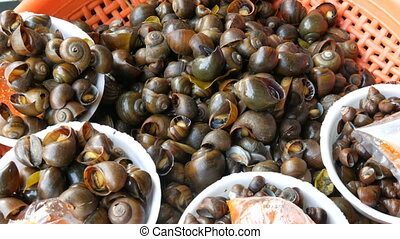 Freshly cooked boiled snails on a counter. Counter with Thai food. Asian street food
