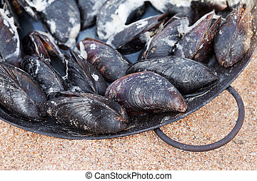 Freshly cooked mussels in metal tray on sand beach