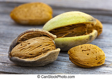 Freshly harvested almonds on a wooden table