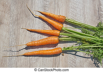 Freshly harvested homegrown organic carrot on wooden table. top view, copy space.