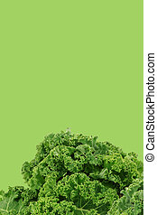 freshly harvested kale cabbage stems on a green background