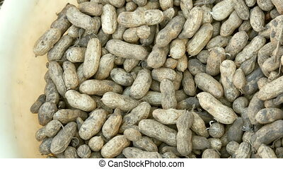 Freshly harvested peanuts from the ground in shell. Peanut harvest close up view