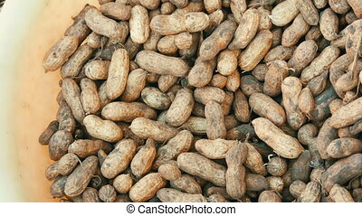 Freshly harvested peanuts from the ground in shell. Peanut harvest close up view zooming